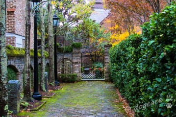 A rainy driveway in Charleston, South Carolina