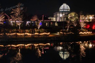 Greenhouse at Night at the Lewis Ginter Botanical Gardens, Richmond, Virginia