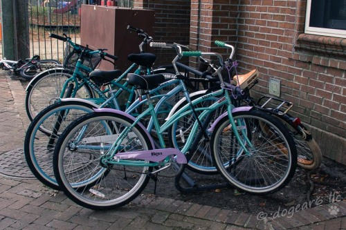 I loved the colors of these bikes outside the woman's dormitory in Charleston.  Because of the lack of parking, you see a lot of people riding bikes.
