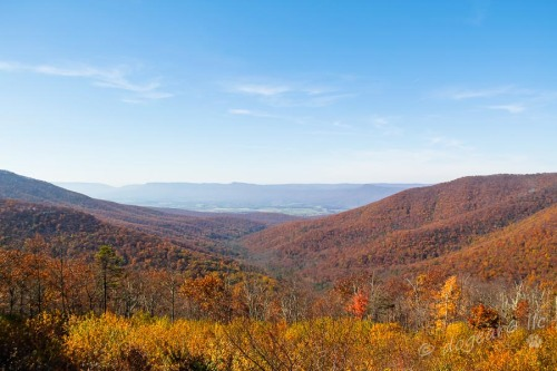 Shenandoah Valley taken from Skyline Drive in Fall 2011.