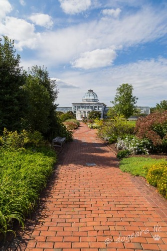 The greenhouse at Lewis Ginter Botanical Gardens in Richmond, Virginia