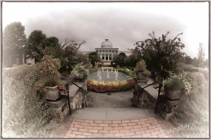 Grenhouse at Lewis Ginter Botanical Gardens; processed using Topaz Labs Black and White Filters