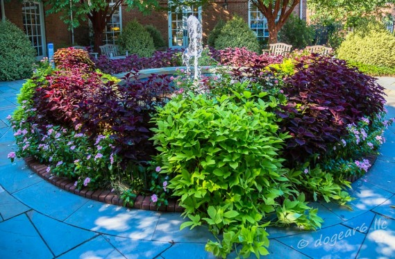 Fountain; September 2014 at Lewis Ginter Botanical Gardens, Richmond, Virginia