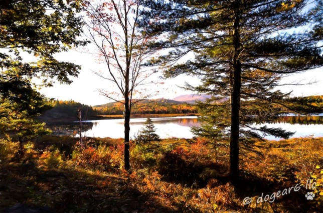 Eagle Lake at Acadia National Park; Used Topaz Labs Impression filters to create a painting