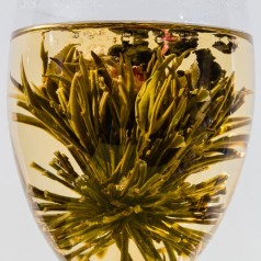Blooming flower tea in a wine glass