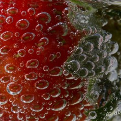 Strawberry with 7-Up bubbles