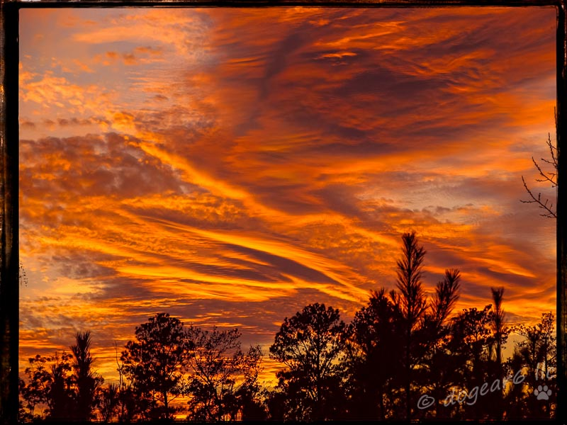 """Sunset in Richmond, Virginia.  Post processed with Topaz Effects """"Warm Tone 2"""" and on1 border """"Sloppy Border 8""""."""