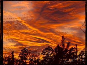 "Sunset in Richmond, Virginia. Post processed with Topaz Effects ""Warm Tone 2"" and on1 border ""Sloppy Border 8""."