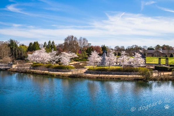 Overlooking Lake Sydnor at Lewis Ginter Botanical Gardens, Richmond, Virginia