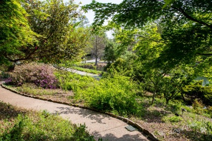 View at the Lewis Ginter Botanical Gardens