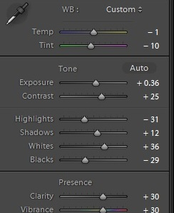 Basic Lightroom Adjustments